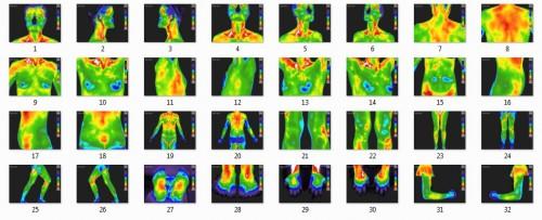 Sample of Full Body Study